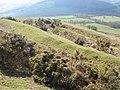 Pen-y-crug hillfort - geograph.org.uk - 374823.jpg