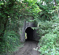 Penponds tunnel 1.jpg