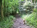 Permissive footpath near Old Wardour Castle - geograph.org.uk - 887355.jpg