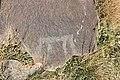 Petroglyphs from Ukhtasar 15092019 (312).jpg