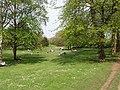 Picnics in Hyde Park - geograph.org.uk - 788974.jpg