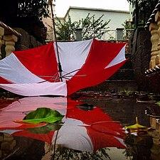 PikiWiki Israel 29436 red umbrella.JPG