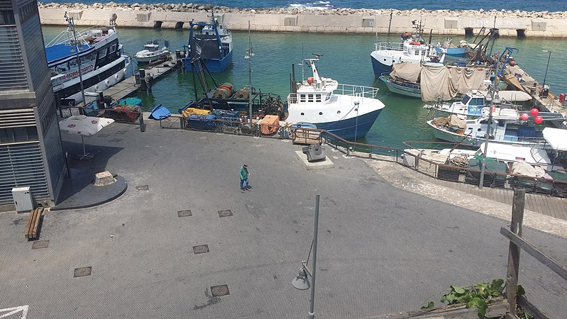 מזחים בנמל יפו