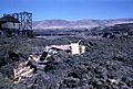 Platform near Celilo Falls (3229035137).jpg