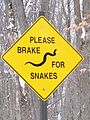 Please Brake for Snakes sign in Killbear Provincial Park.jpg