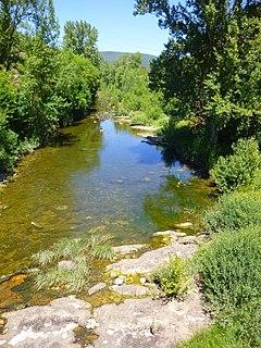 Bayas (river) river in Spain