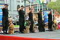 Policía Canina Hacen una Exhibición (6911505261).jpg