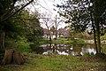 Pond, Lakeside, Enfield - geograph.org.uk - 770169.jpg
