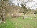 Pond, The Hundred. - geograph.org.uk - 146891.jpg