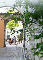 Porche du canadel - village.jpg