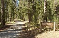 Porcupine-Flat-Campground-Entrance.jpg