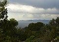Port-cros-nature 3.jpg