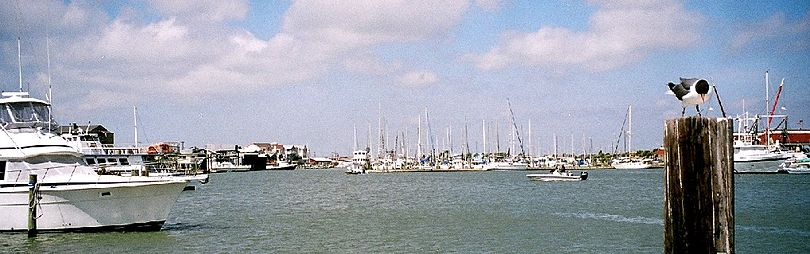 The marina at Port Aransas