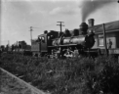 Private line bush locomotive (Mallett) beside a station with a board advertising the Taupo Totara Timber Company ATLIB 314220.png