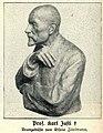 Professor Karl Justi. Bronzebüste von Gisela Zitelmann.jpg