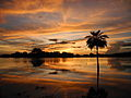 Puesta de sol dorada, Los Llanos, Guárico.JPG