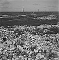Puin in de duinen bij Petten, Bestanddeelnr 900-5146.jpg