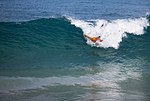 Pyramid Rock Body Surfing Competition 2015 150208-M-TT233-041.jpg