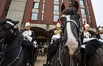 QUEENS CAVALRY READY FOR SUMMER OF CEREMONIAL MOD 45162384.jpg