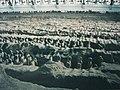 Qin Shihuang Terracotta Army, Pit 1 (9891964656).jpg