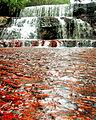 Quebrada de Jaspe en Canaima.jpg