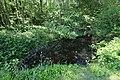 Réserve naturelle régionale des étangs de Bonnelles le 26 mai 2017 - 15.jpg