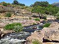 Río Lozoya Puente Congosto.jpg