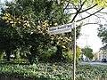 Rabbiner-Neumark-Weg (Duisburg-Mitte).JPG
