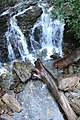 Rainbow Falls, Cascade from Bear Creek Drive near Harrison Lake, BC Canada - panoramio.jpg