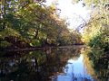 Red Cedar River in autumn, courtesy of Michigan State University