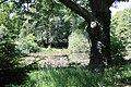 Rhododendronpark Bremen 20090513 279.JPG