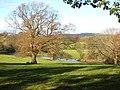 River Derwent - geograph.org.uk - 607817.jpg