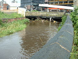 River Roch after heavy rain 2.jpg