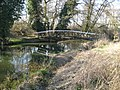 River Wey, Bowers Bridge - geograph.org.uk - 702203.jpg