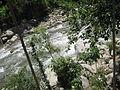 River at lower dir.JPG