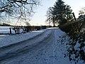 Road to Netherton - geograph.org.uk - 1650171.jpg