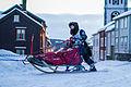 Robin Hørsandlien (8433792552).jpg