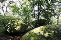Rochers-de-puychaud-2.jpg