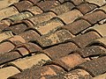 Roof tiles in Catalunya.jpg
