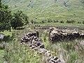 Ruins and sheep pens - geograph.org.uk - 202032.jpg