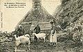 Saint-Michel-en-Grève - Maison aux chèvres - AD22 - 16FI5731.jpg