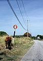 Saint Andrew, Barbados 065.jpg