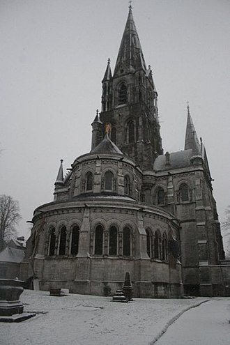 Saint Fin Barre's Cathedral - Southern front