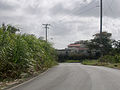 Saint Philip, Barbados 003.jpg