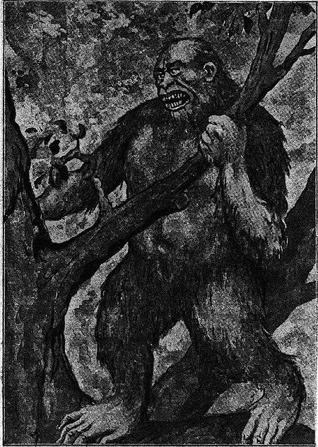 Tronco scimmia dating