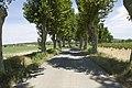 Salles-d'Aude - panoramio (13).jpg