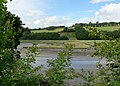 Saltmarsh, Tamerton Lake. Plymouth - geograph.org.uk - 914949.jpg