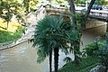 SanAntonio-RiverWalk-5148.jpg