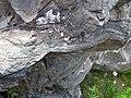 Sandorite lamprophyre with xenoliths (Sandor Dike, Neoarchean, 2.703 Ga; Route 17 roadcut northeast of Wasp Lake & north of Wawa, Ontario, Canada) 6 (48342364231).jpg
