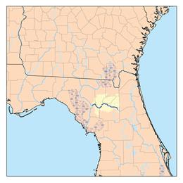 Santa Fe River Florida  Wikipedia